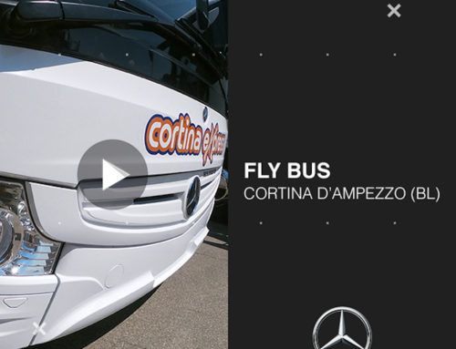 Nuova consegna: FLY BUS (video)